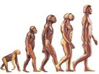 Evrimde Yaradılış ve Hz Adem
