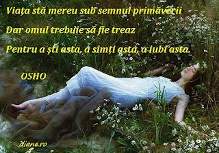 Primavara Osho