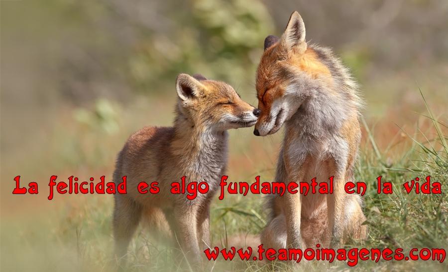 Imagenes De Felicidad Con Frases Gratis Para Descargar