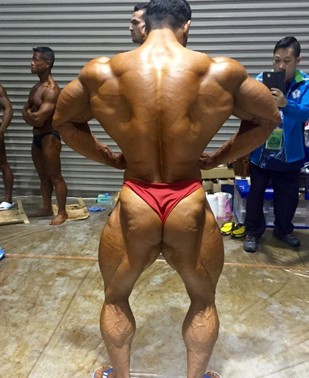 Muscle Ammiratore: IFBB IRANIAN BODYBUILDER AYAT BAGHERI