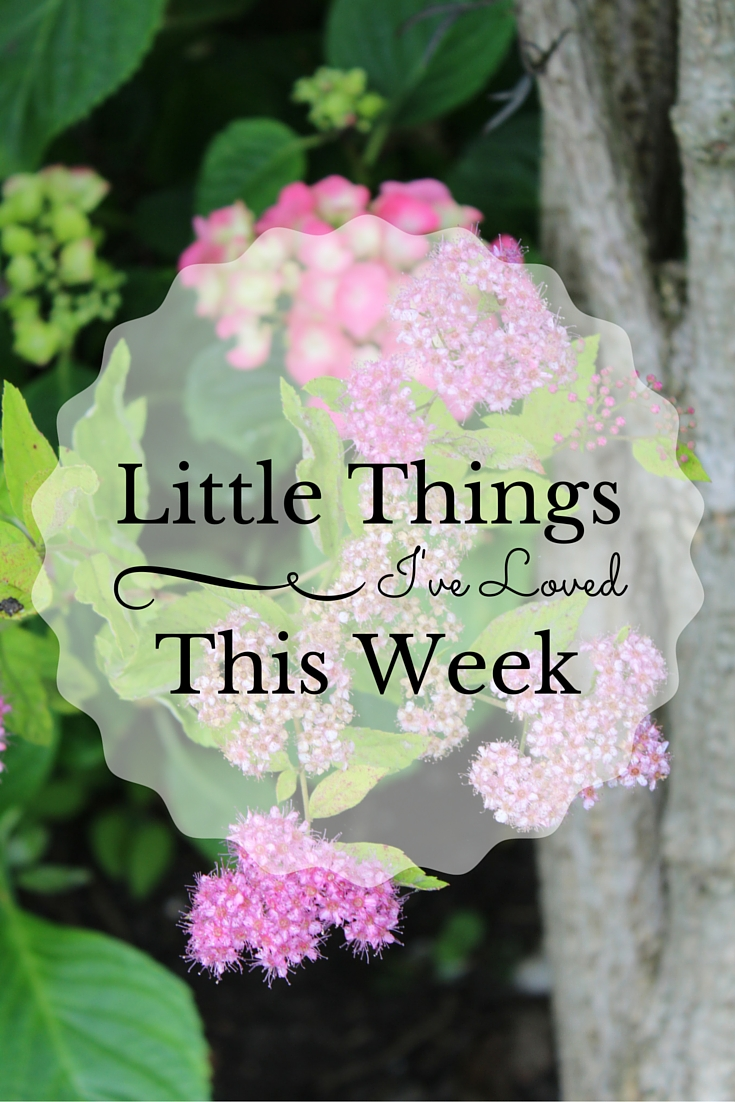 Little Things I've Loved This Week Number 30 on Ginevrella Lifestyle Blog