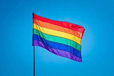 Resultado de imagem para gays, lésbicas, e transexuais