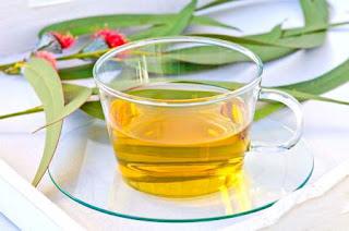 té de eucalipto