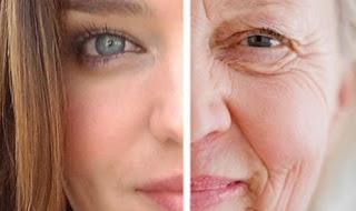 Image result for meremajakan kulit