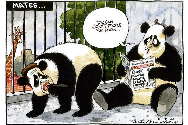 Panda gay