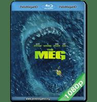 MEGALODÓN (2018) 1080P HD MKV ESPAÑOL LATINO