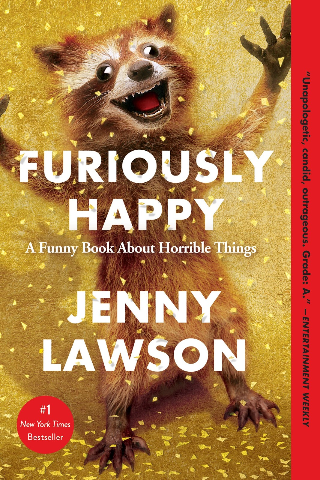 Let's Pretend This Never Happened // Furiously Happy by Jenny Lawson