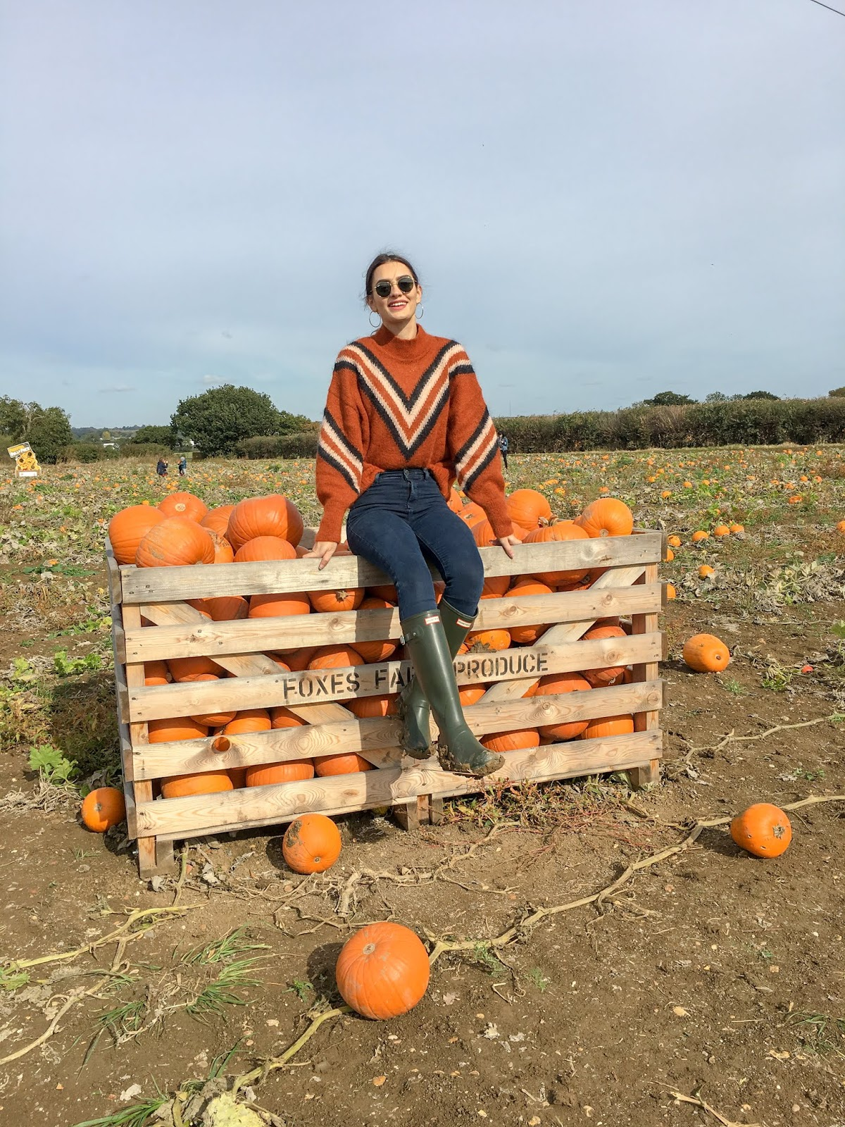 peexo blog foxes farm produce london pumpkin farm