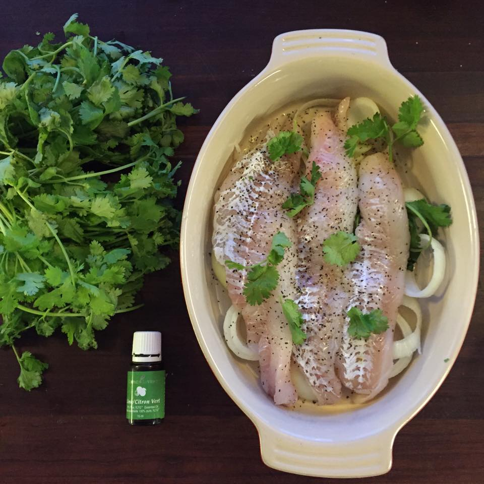 Hines sight blog easy weeknight dinner for busy parents for Easy fish dinner