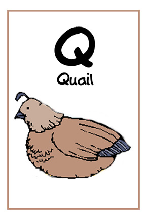 We Love Being Moms Letter Q Quail