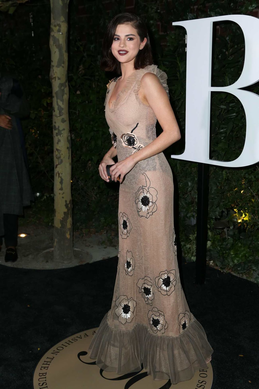 Selena Gomez wears daring sheer gown for the Business of Fashion 500 Gala