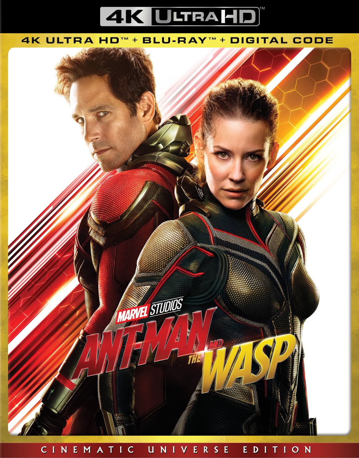 Ant-Man 2015 Hindi ORG Dual Audio 400MB BluRay 480p ESubs
