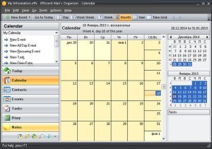 Efficient Mans Organizer 5.50 Build 540 Multilingual Full Version
