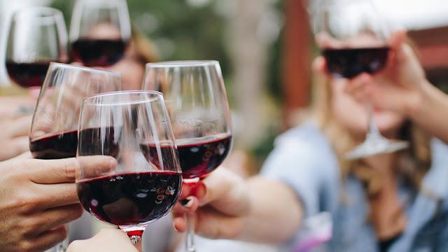 Moscas de la fruta ebrias indican la vía para curar los efectos de alcohol