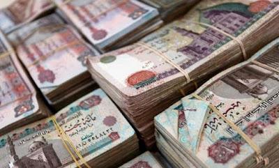 كالتشر-عربية-ضبط-موظف-بجامعة-الإسكندرية-استولى-على-1.6-مليون-جنيه-من-أموال-الجامعة