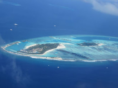 Barriere coralline finiranno prima del secolo