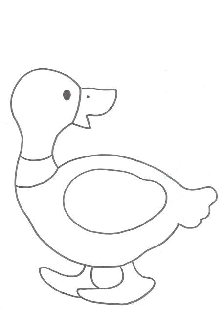Dibujos para imprimir, pintar, colorear y más: animales acuáticos
