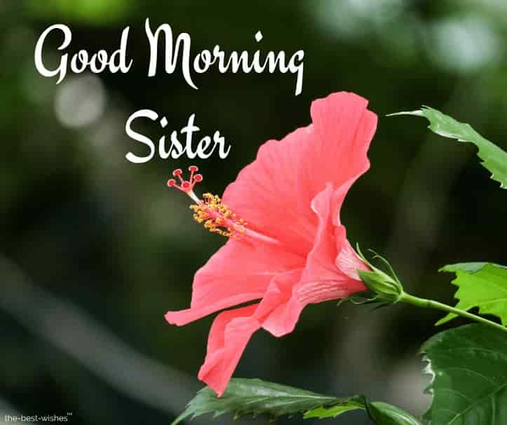 good morning for sister