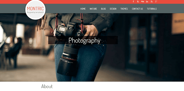 Montric Blogger Template