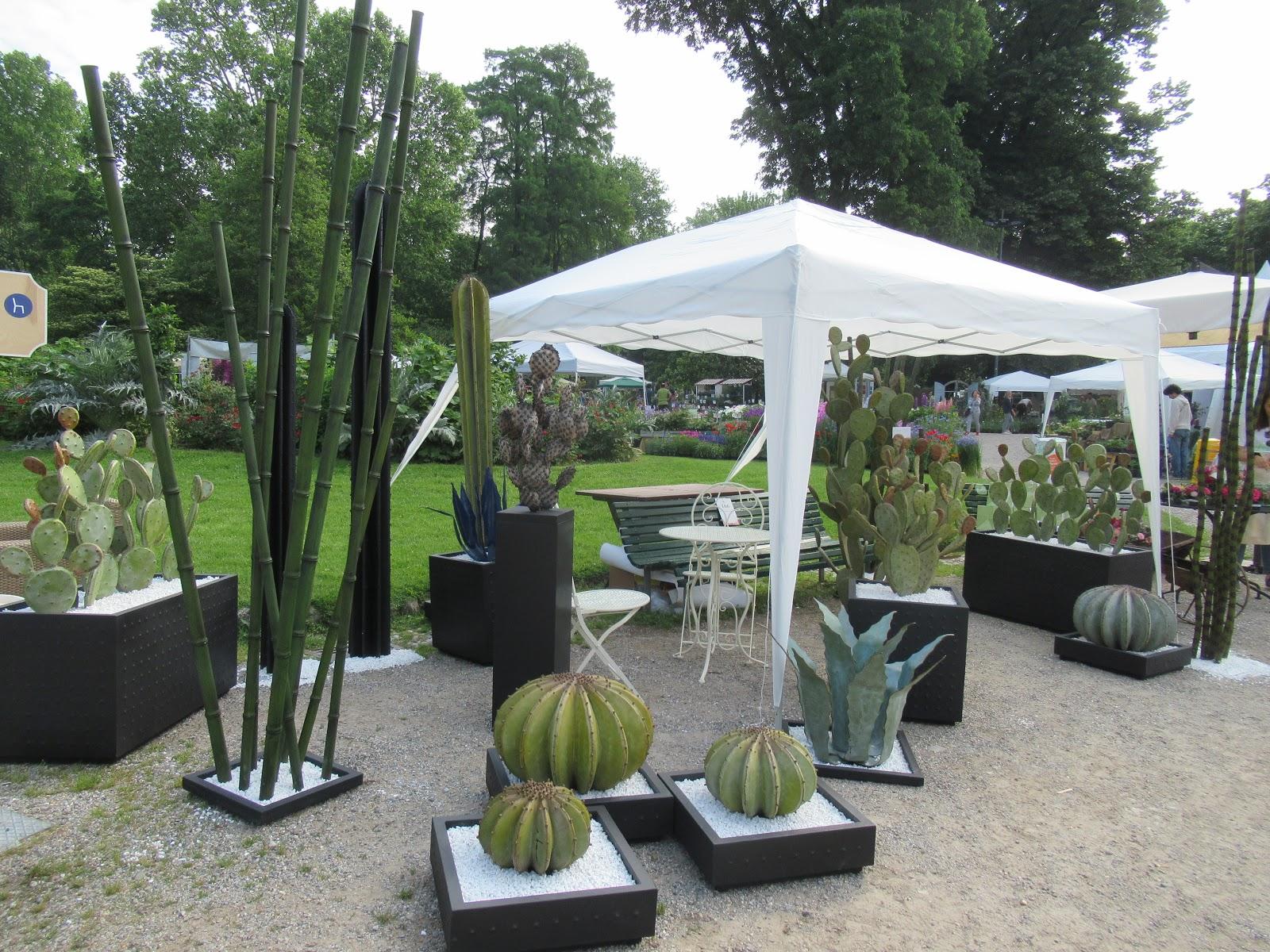 Elementi Decorativi Da Giardino : Immagini da orticola