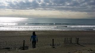 茅ヶ崎海岸サザンビーチ近辺はサーフィンもスケートボードも楽しめます。