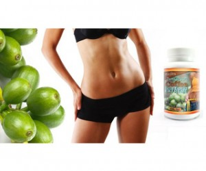 Image Result For When To Take Green Coffee Bean Extract For Weight Loss
