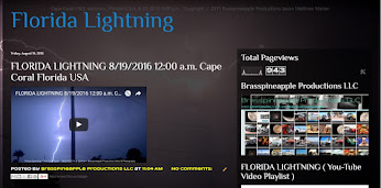FLORIDA LIGHTNING PROJECT