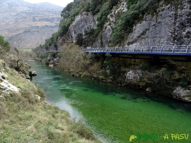 Ruta a la Pica de Peñamellera: Río Cares con color verde