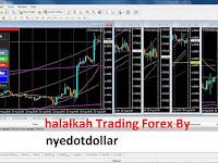 Halal kah berbisnis di Trading Forex