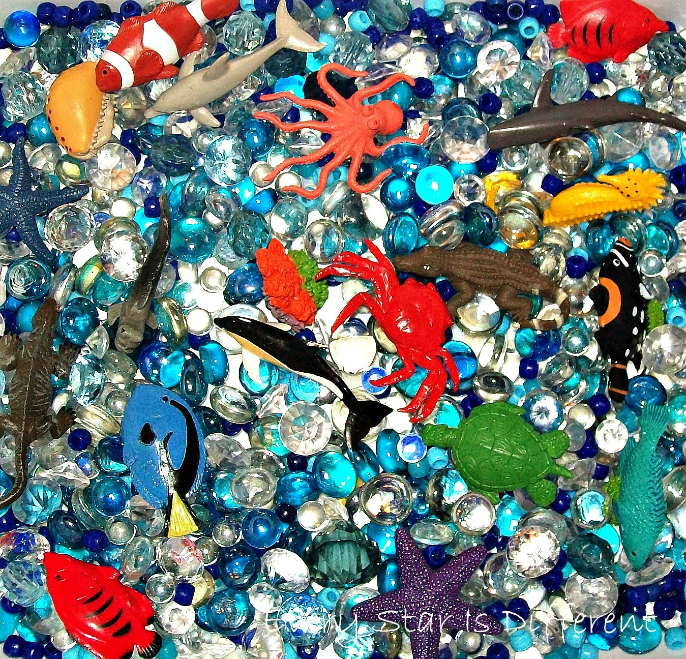 Great Barrier Reef Sensory Bin