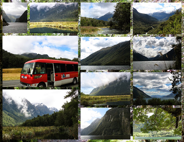 Scenes from Milford Sound and the BBQ Bus