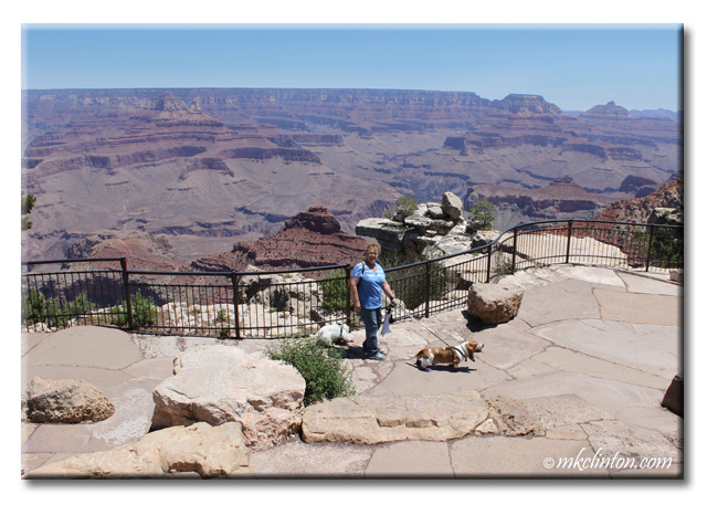 Woman with Basset & Westie at the Grand Canyon