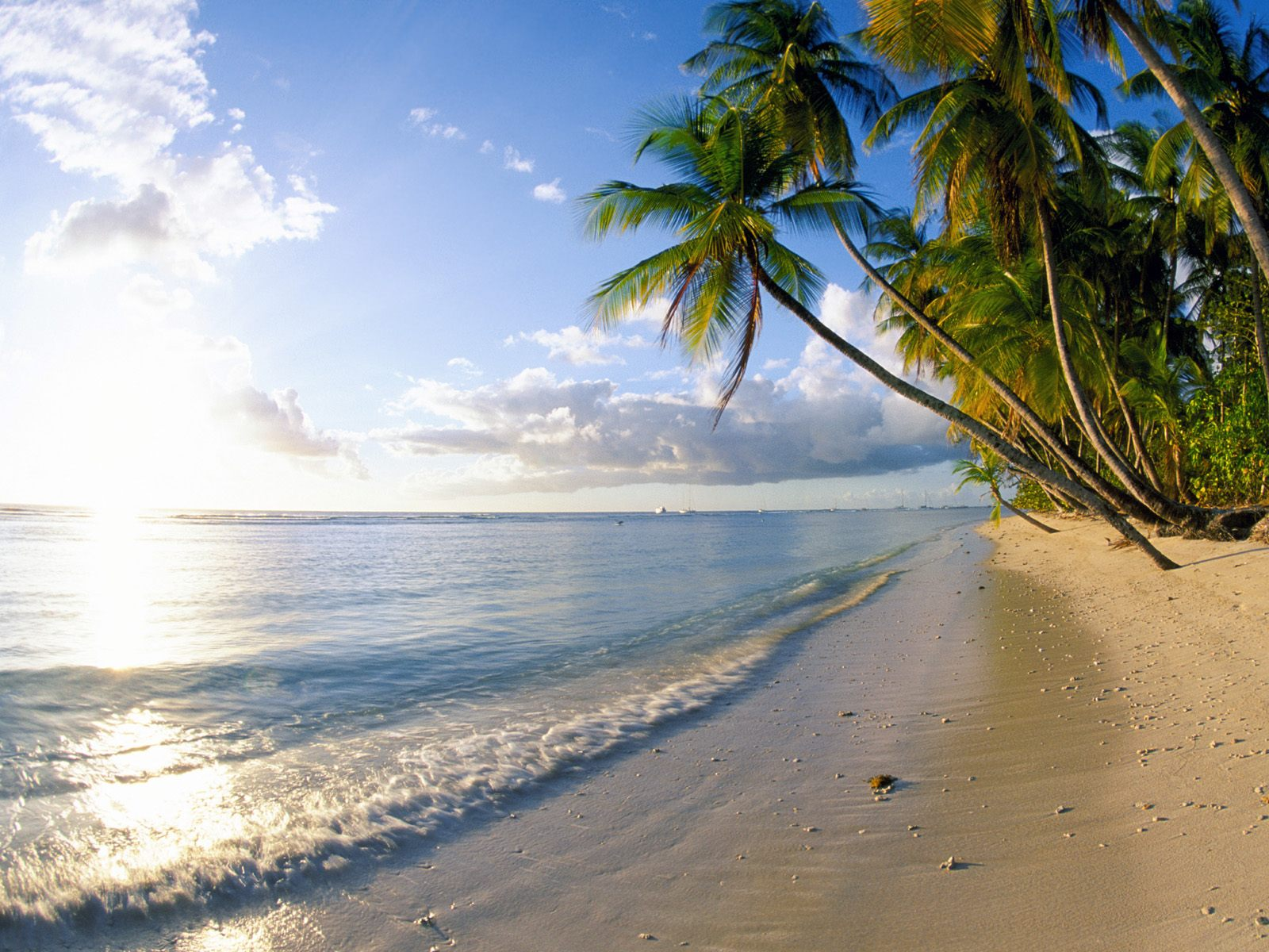 Hd Tropical Island Beach Paradise Wallpapers And Backgrounds: Sembrono: Wallpapers Of Beach
