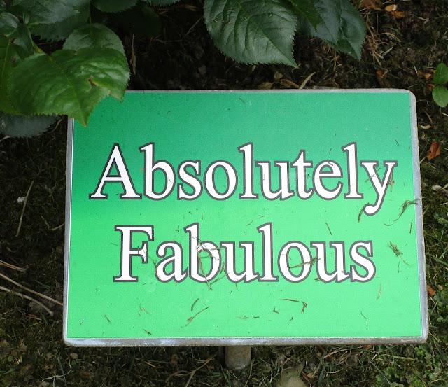 Absolutelu fabulos