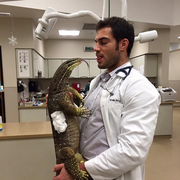 omorfos-kosmos.gr - 15+ Λόγοι για να εργάζεσαι σε Νοσοκομείο ζώων