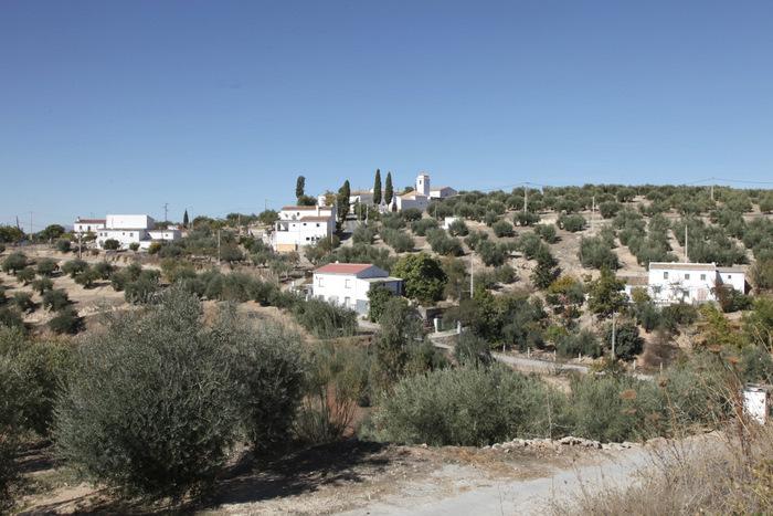 Casas de cabildo fundaci n de la ermita de san vicente de for Parque mueble alcala la real