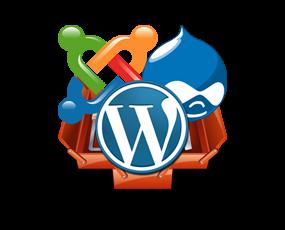 Pengertian CMS (Content Management System) Untuk Website