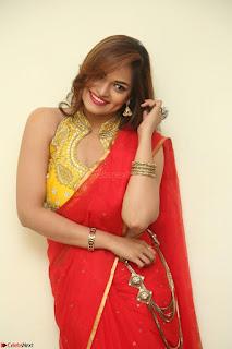 Actress Ashwini in Golden choli Red saree Spicy Pics ~  059.JPG