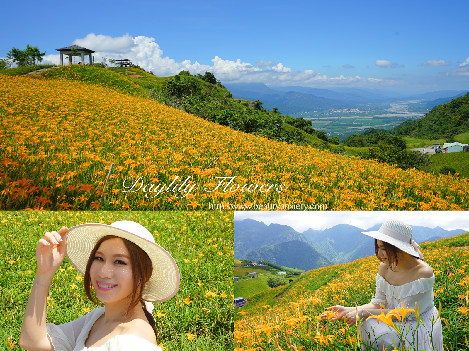 collage2-beautyanxiety.com-hualien-travel-liushidan-mountain-daylily-flowers