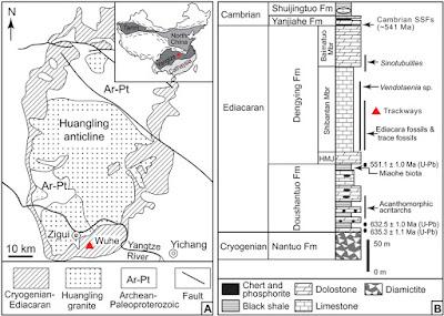 Mapa geológico y columna estratigráfica.