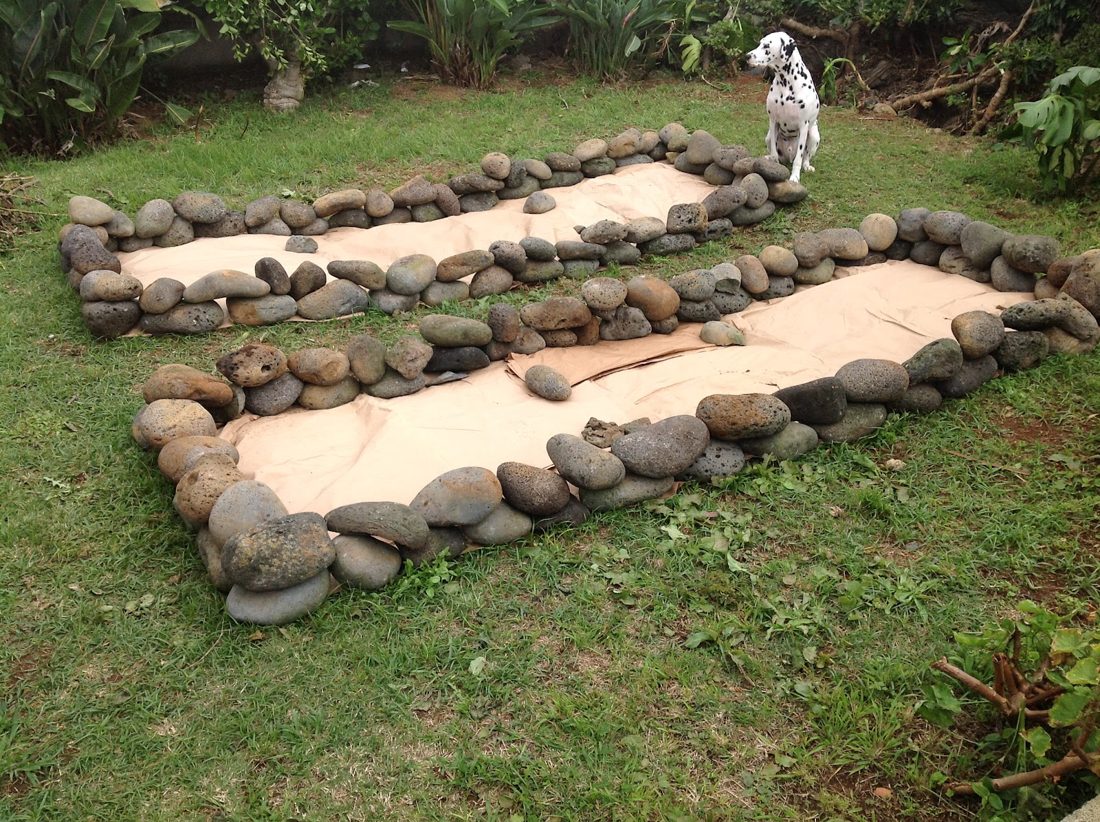 Temperate Climate Permaculture: My New Garden Beds
