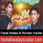 https://www.humaliwalyazadar.com/2018/09/fazal-abbas-roman-haider-nohay-2019.html