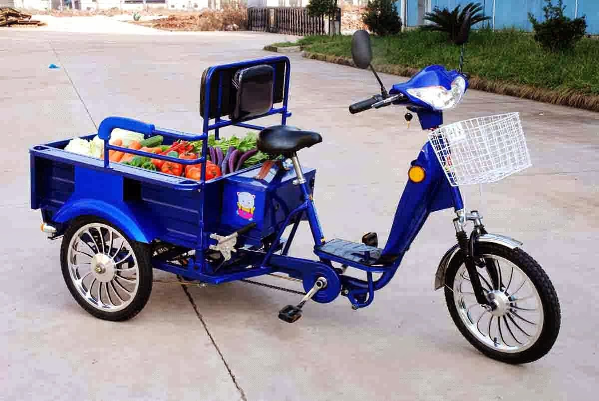Electric Trikes For Adult