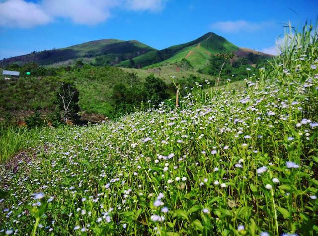 foto indahnya bukit kawai kawai kalimantan selatan