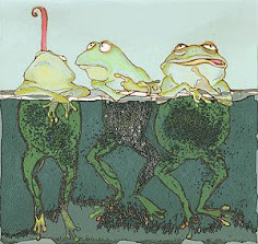 You are among toads