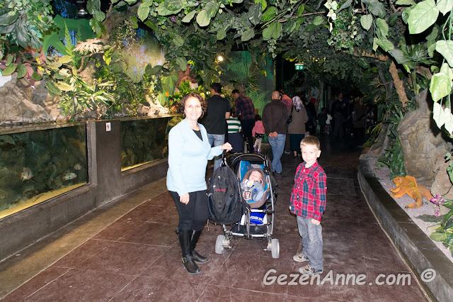 Turkuazoo'nun loş ortamında akvaryumlar arasında oğlum ve bebeğimle dolaşırken, Forum İstanbul
