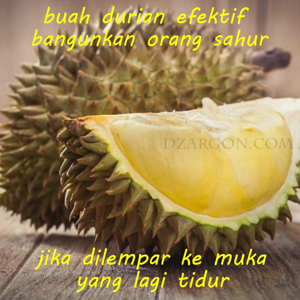 Foto Meme Gokil buah durian buat bangunin orang