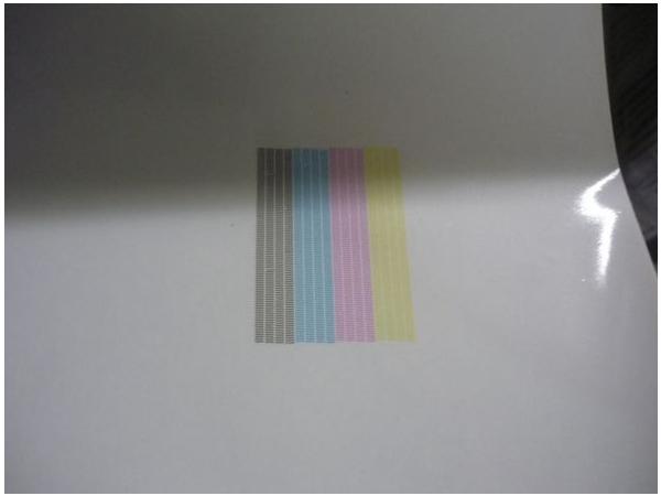 Ebay Scam Hunter Roland Versacamm Sp 540i 54 Inch Printer