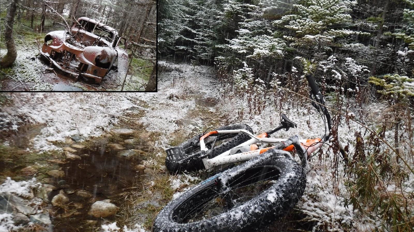 moose 3 fat bike