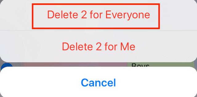 Begini Cara Menarik/ Menghapus Pesan WhatsApp untuk Semua Orang di Android dan iPhone 3
